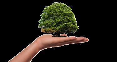Hentikan Kriminalisasi Pejuang Lingkungan: ICJR KirimAmicus Curiae Kepada Pengadilan Negeri Indramayu atas Perkara 397/PID.B/2018/PN.IDM) atas nama Terdakwa Sawin, Sukma dan Nanto