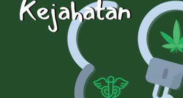 Ganja untuk Kesehatan Bukan Kejahatan: Amicus Curiae untuk Perkara Reyndhart Rossy N. Siahaan di PN Kupang